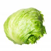 picture of iceberg lettuce  - Green lettuce isolated on pure white background - JPG