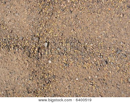 Pieces Of The Brown Earth And The Rumpled Yellow Grass And Pebbles