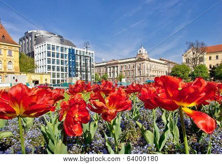 Zagreb Colorful Flora And Architecture