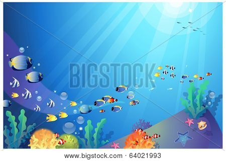 Underwater Sealife