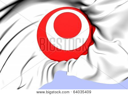 Symbol Of Okinawa Prefecture