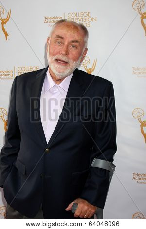 LOS ANGELES - APR 23:  Robert David Hall at the 35th College Television Awards at Television Academy on April 23, 2014 in North Hollywood, CA