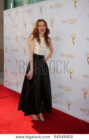 LOS ANGELES - APR 23:  Darby Stanchfield at the 35th College Television Awards at Television Academy on April 23, 2014 in North Hollywood, CA