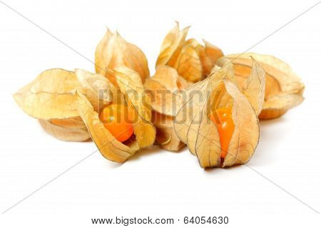 Food  Ingredient Physalis