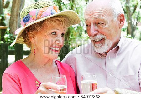 Beautiful retired senior couple toasting each other with champagne in an outdoor setting.