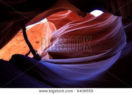 Usa- Lower Antelppe Canyon Hole And Stick