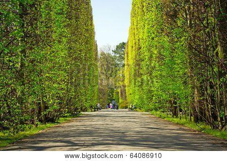 GDANSK, POLAND - APRIL 24, 2014: Spring in the Park Oliwski and gardens in Gdansk on 24 April 2014. Park Oliwski is the biggest heritage park in Gdansk with area of 11,3 ha (113 000 m2).