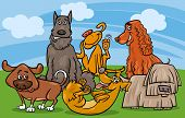 image of mongrel dog  - Cartoon Illustration of Cute Dogs Characters Group - JPG