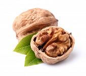 picture of walnut  - Walnuts with leaves - JPG