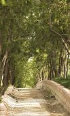 stock photo of naturel  - wiewing parkway in the naturel city garden