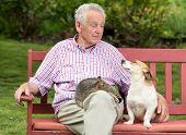 stock photo of lap  - Old man talking to his dog while cat resting in his lap - JPG