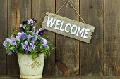 foto of wooden fence  - Welcome sign by a pot of spring flowers against wooden fence  - JPG