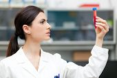 stock photo of pharmaceutical company  - Woman researcher doing a blood test in a laboratory - JPG