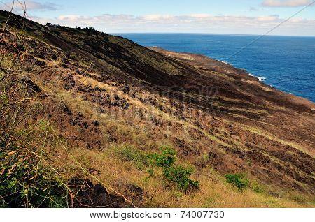 Rugged Mountain Coastline