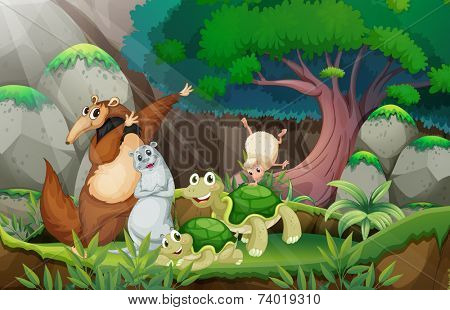Illustration of many animlas in the jungle