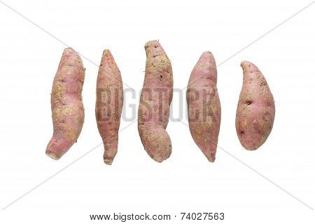 Raw Sweet Potato Isolated On White Background