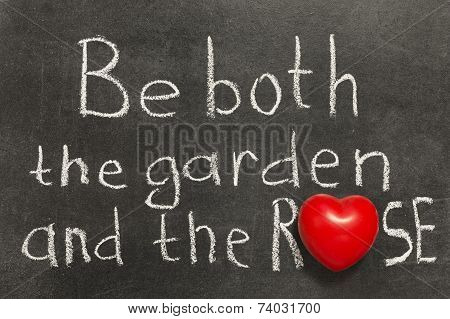 The Garden And Rose
