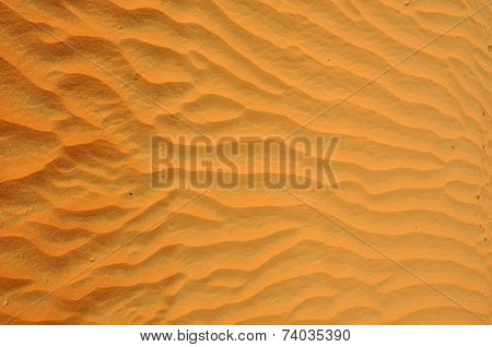 Liwa sand ripples
