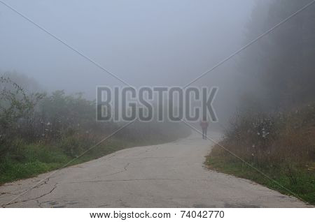 Walking Down The Road In The Fog