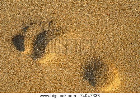 Sandy single footprint