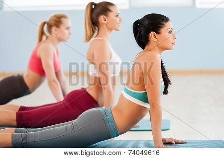 Making Their Body Flexible.