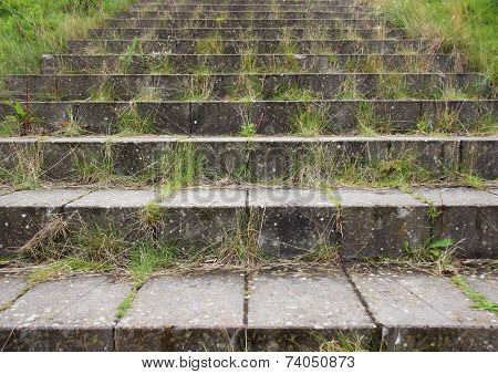 Concrete Brick Stair Steps With Green Weeds
