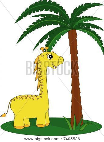 Giraffe and the palm