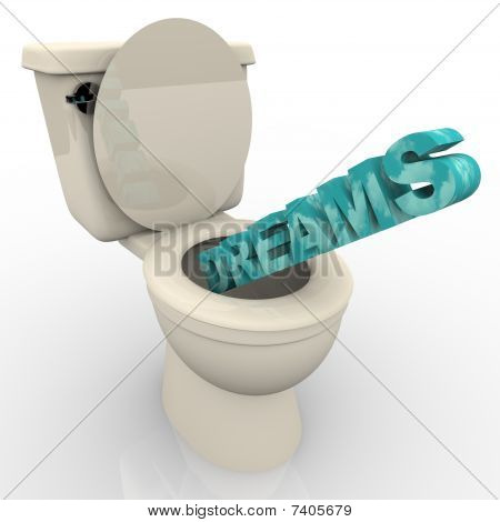 Dreams Flushing Down The Toilet