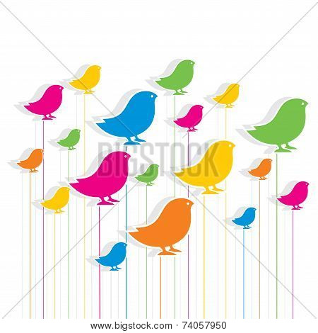 colorful bird design pattern background vector