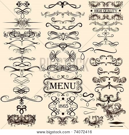 Collection Of Vector Calligraphic Elements