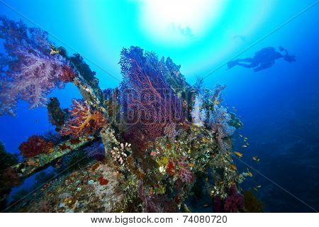 deep wreck scuba diving wreck