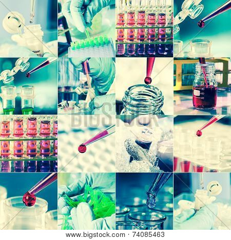 Work In The Microbiology Laboratory, Medical Research Set