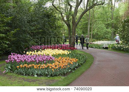 Colorful flowerpark
