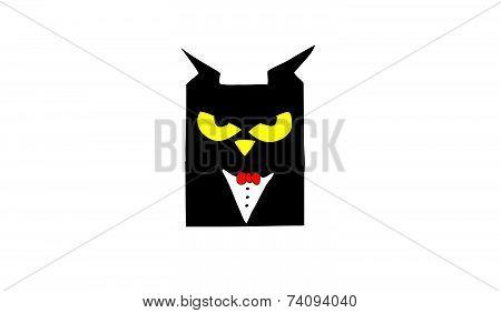 Sova  owl