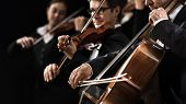 stock photo of orchestra  - String orchestra performing on stage with cello on foreground - JPG