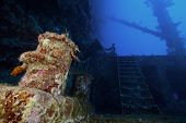 picture of wrecking  - deep wreck diving in a tropical sea - JPG