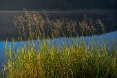 image of hazy  - Hazy morning by the lake in autumn - JPG