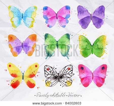 Set watercolor butterfly