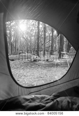 Camping Sunrise Through Tent Black And White