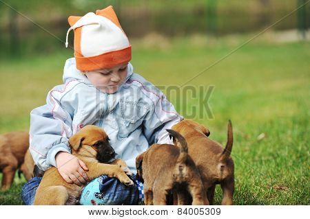 Little Boy With  Puppies