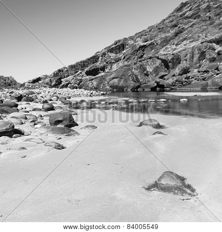 Fleurieu Peninsula South Australia Black And White