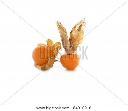 Cape Gooseberry (physalis) On White Background