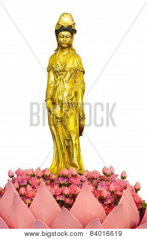 Guan Yin Isolated