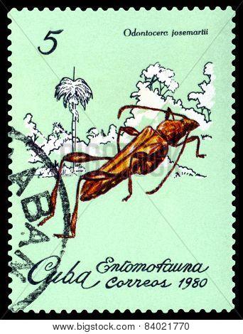 Vintage  Postage Stamp. Beetle Odontocera Josemartii.