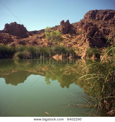 Lagoa do deserto estagnada