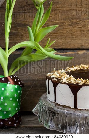 Cake bird's milk with chocolate and coconut