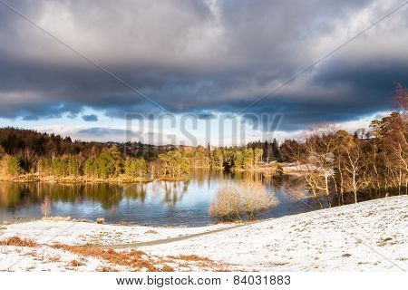 Tarn Hows In Winter
