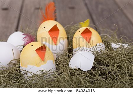 Three Easter Egg Chicks