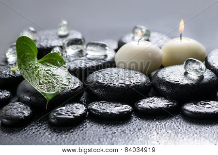 Beautiful Spa Concept Of Green Leaf Calla Lily, Ice And Candles On Zen Basalt Stones With Drops, Clo