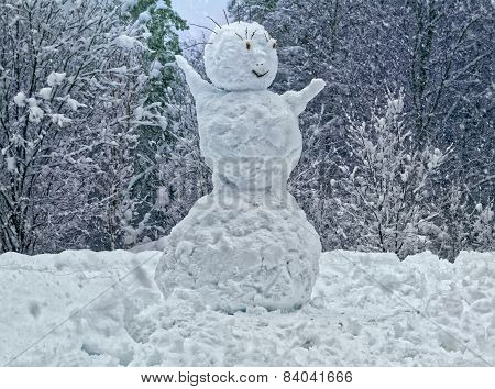 Snowman In Winter Forest